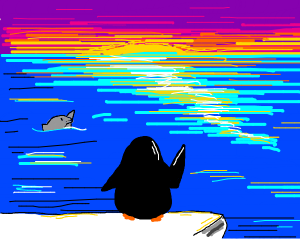 penguin looks at the ocean