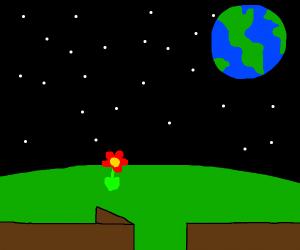 A space yard