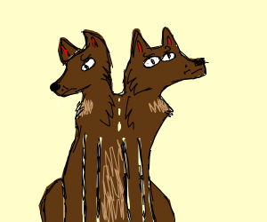 Two-headed dog