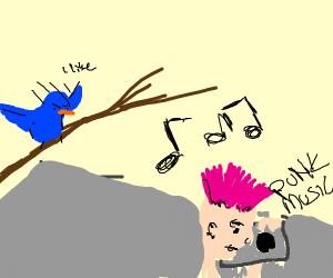 Bird likes the punk music