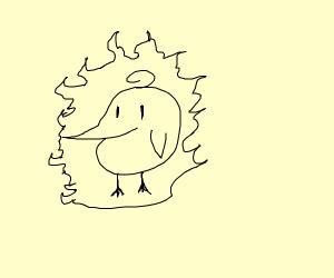 a berd