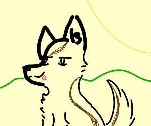 Super cute German Shepard doggo outside