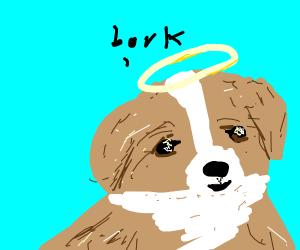good doggo