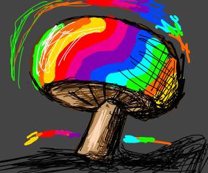 Exotic Rainbow Mushrooms