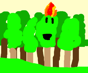 Oh no! I'm a tree in a forest fire!