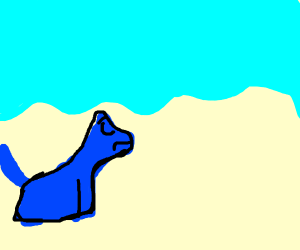 Blue Dog is sad on the Beach