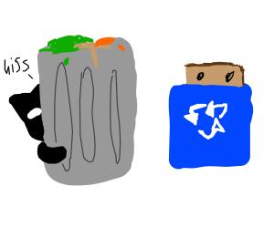 cat hides near litter bin