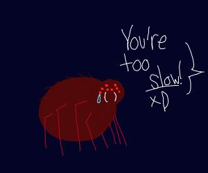 Spider slowpoke, Spider slowpoke...