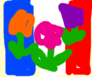flowers in color of backwards french flag
