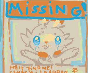 Scorbunny is missing