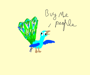 Peacock selling itself