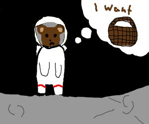 Bear astronaut wants basket