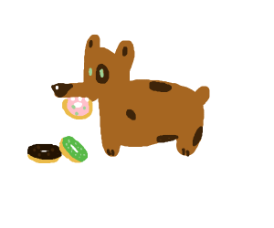dog snacking on donuts