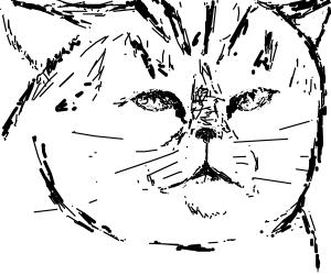 Sassy Puss.