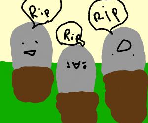 3 graves saying RIP