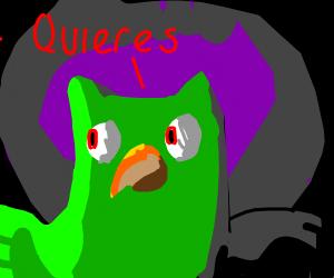 Duo says Quieres