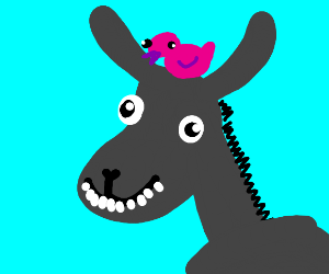 donkey with a bird on its head