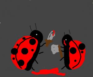 ladybug death fight