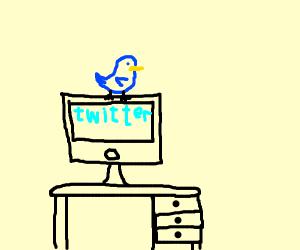 Blue bird on a computer