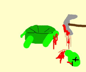 Decapitated turtle