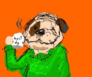 cute bulldog in a green sweater