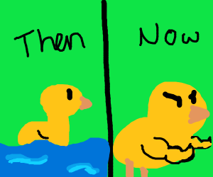 The ducks have evolved!