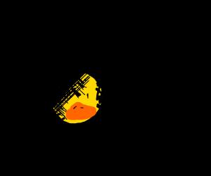 duck in shadow