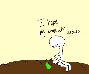 Stickman planting an Avocado