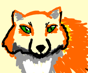 fox with green eyes