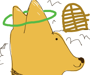 Doggo heaven