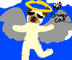 R.I.P Grumpy Cat. You were a good girl