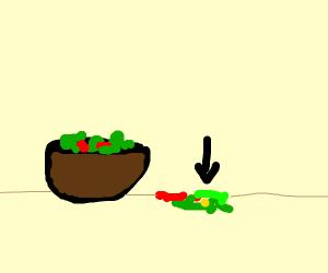 Spilled salad