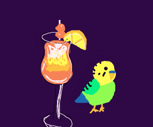 Tropical Drink with a Parrot