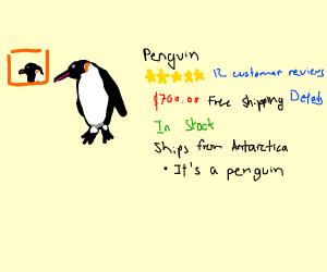 Amazon penguin