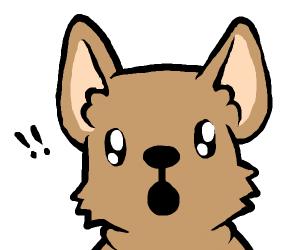 Shocked Doge