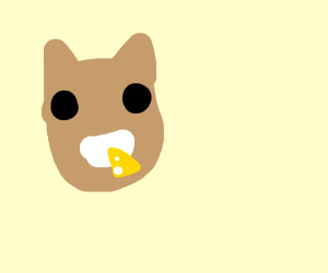 A cat eating cheese