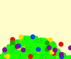 Ball-pit, but for rich people