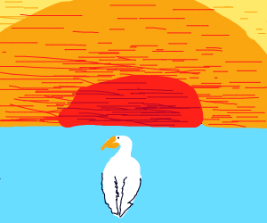 a pelican swimming to the horizon.