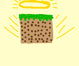 the holy grass block
