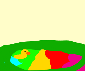 duck swimming in a rainbow pond