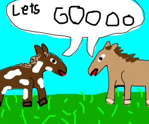 Horses saying LETS GOOOOO