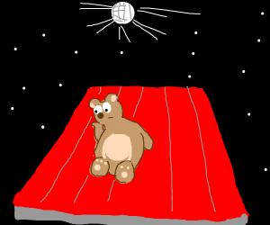 Bear bored by disco