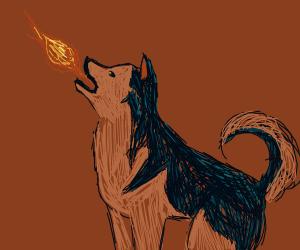 Malamute Breathes Fire