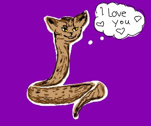 cat snake loves you