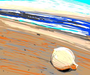 onion at the beach