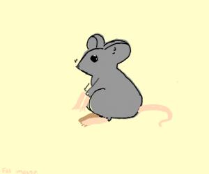 a lil fat mouse