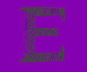 very detailed e
