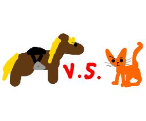 Horses vs cats