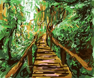 Forest Bike Path