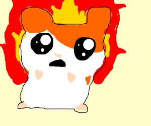 Hamtaro on fire